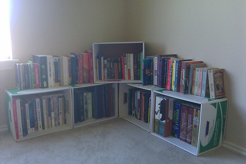 A Makeshift Bookshelf