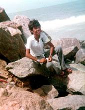 pedras do cais do porto de maceió