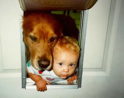 funny pictures of animals for kids