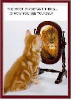 gato espejo leon
