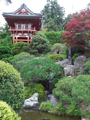 the Japanese tea garden.