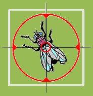 El cazador de moscas