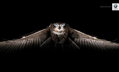 BMW night vision owl