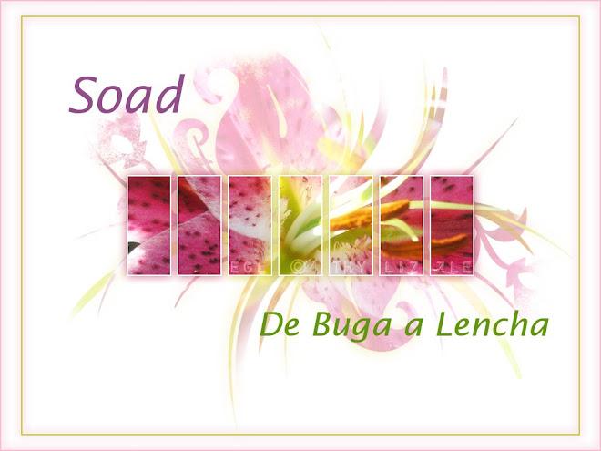 Soad de Buga a Lecha y otras desvariaciones