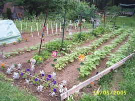 My Garden~2005