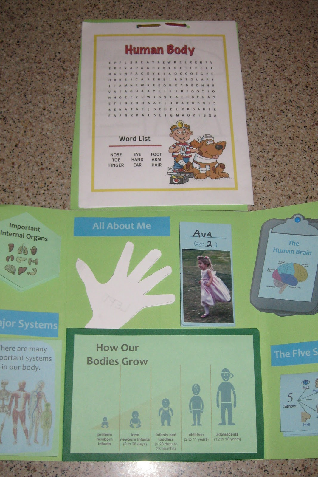 lapbook templates