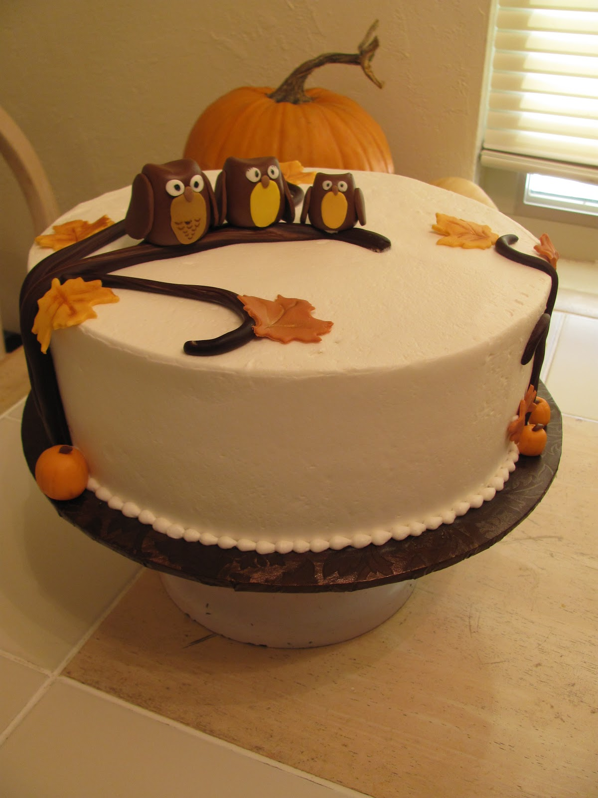 Nine by Thirteen Blog a cute little owl cake