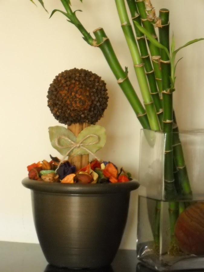 Ambientador naranja - Hacer ambientador casero canela ...