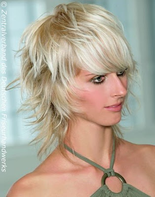 Girl Shag Layered Hairstyle Shaggy Layered Hairstyle