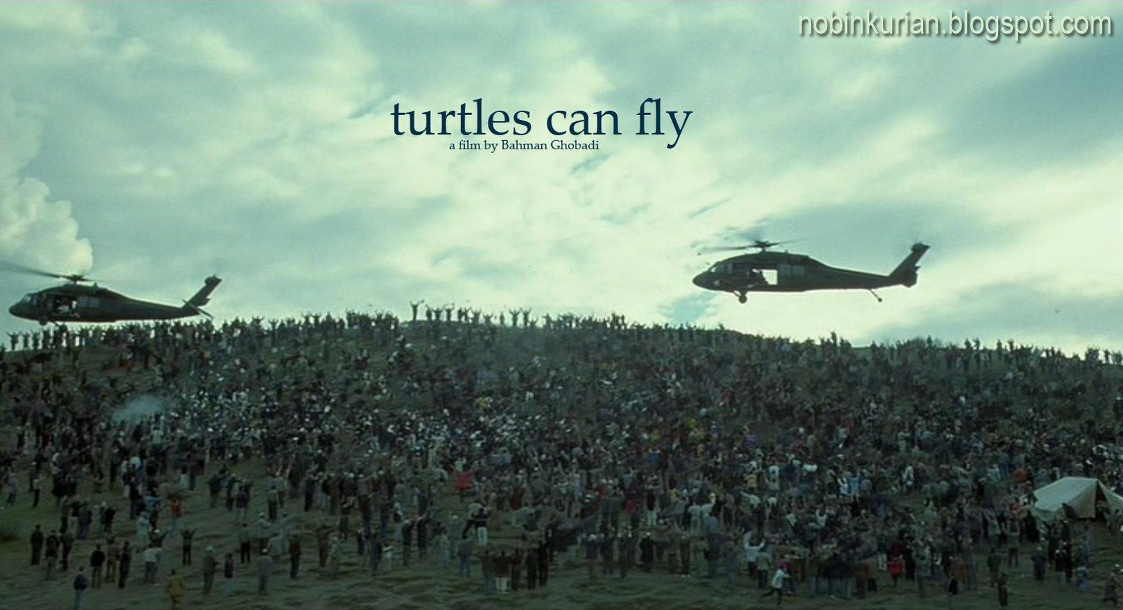 turtles can fly movie response Near the iraqi-turkish border on the eve of an american invasion, refugee children like 13-year-old kak (ebrahim), gauge and await their fate.