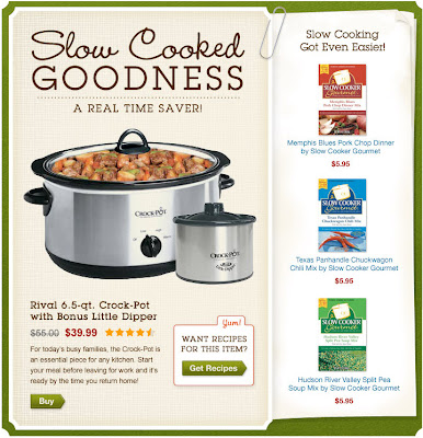 Click to view this Jan. 11, 2011 Cooking.com email full-sized