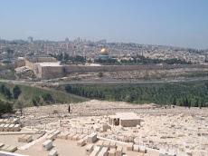Jerusalem - Ou stad vanaf Olyfberg