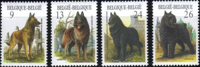 1986年ベルギー王国 ベルジアン・マリノア ベルジアン・タービュレン ベルジアン・グローネンダール ブービエ・デ・フランダースの切手