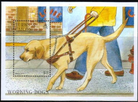 1996年タークス・カイコス諸島 ラブラドール・レトリーバーの切手シート