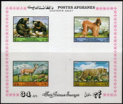1974年アフガニスタン・イスラム国 アフガン・ハウンドの切手