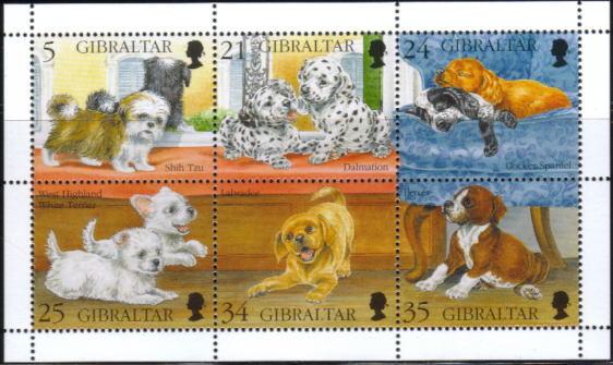 1996年ジブラルタル シー・ズー ダルメシアン コッカー・スパニエル ウエスト・ハイランド・ホワイト・テリア ラブラドール・レトリーバー ボクサーの子犬の切手シート