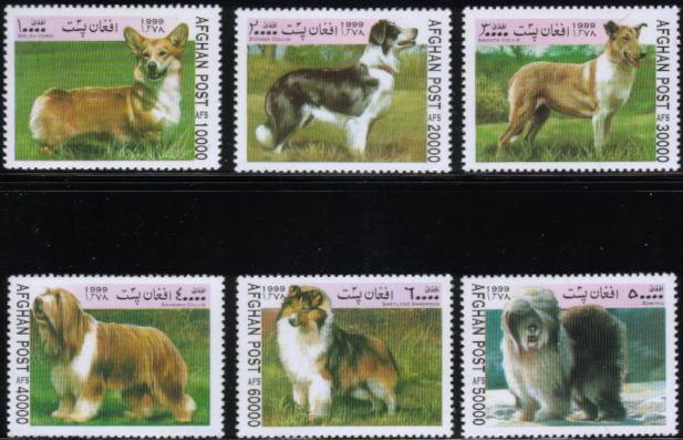 1999年アフガニスタン・イスラム国 ウェルシュ・コーギー・ペンブローク ボーダー・コリー スムース・コリー ビアデッド・コリー シェットランド・シープドッグ オールド・イングリッシュ・シープドッグの切手