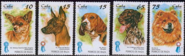 1998年キューバ共和国 チワワ Xoloitzcuintle ビーグル ジャーマン・ポインター チャウ・チャウの切手
