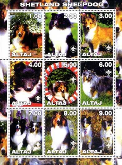 2000年アルタイ共和国 シェットランド・シープドッグのラベルシート