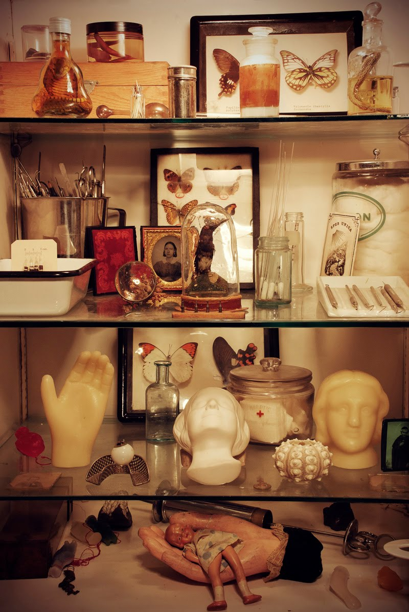 Morbid Anatomy: Morbid Anatomy Library New Regular Open Hours ...