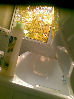 frühherbstliches kastanien laub vom badezimmer aus gesehen