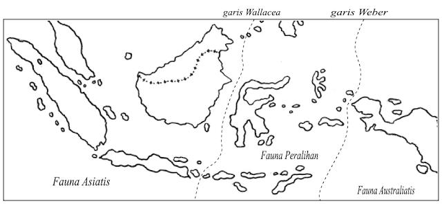 fauna di indonesia fauna indonesia dibedakan menjadi tiga yaitu fauna
