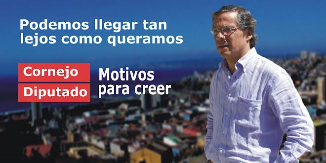 Aldo Cornejo Diputado