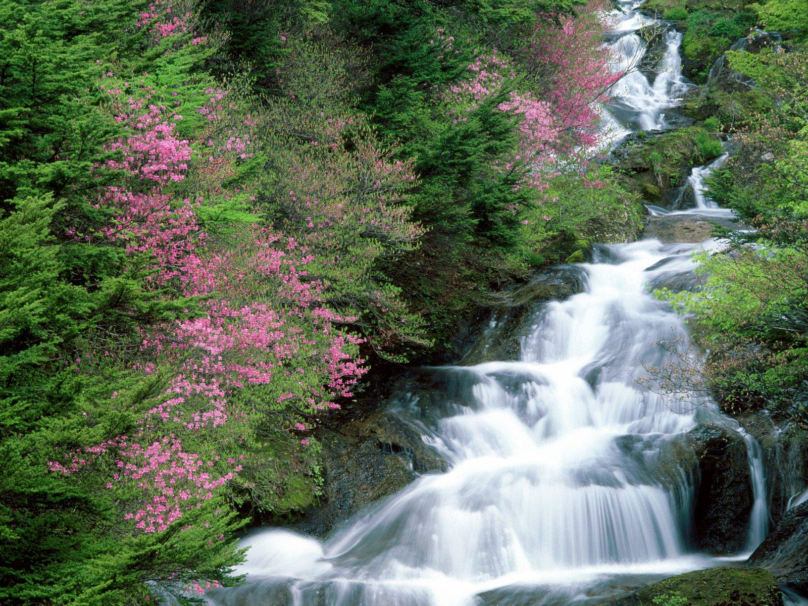 Waterfalls-Wallpaper-0...