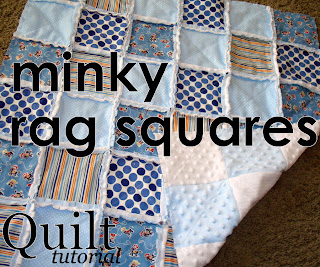 How to Sew a Critter Cuddle Baby Blanket - Minky and