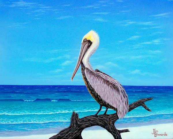 Pelican on beach 16 x 20 (Sold)