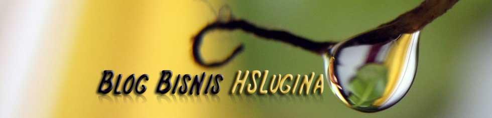 Blog Bisnis HSLugina