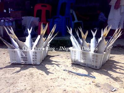 pasar ikan makin kk fish