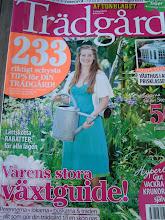 Reportage om vårt Växthus