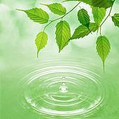 Água sem óleos!