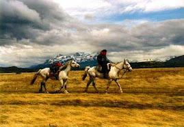 Cultura Gaucha en el Sur de Chile