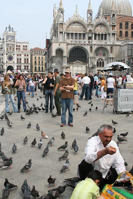 Pat Hates Pigeons