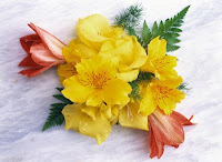 yellow alstroemeria on a table