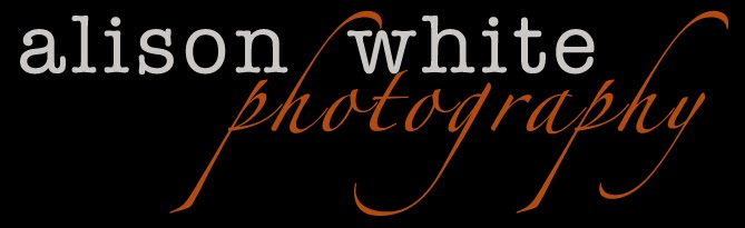 Alison White Photography blog