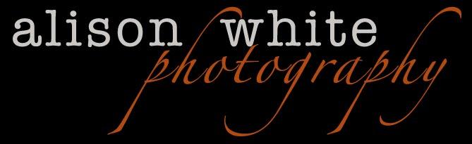 Alison White Photography blog