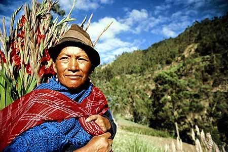 ecuadorian culture - photo #43