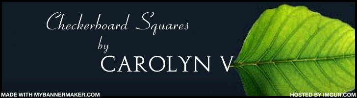 Checkerboard Squares by Carolyn V