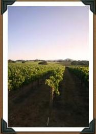 [Winery.JPG.html]