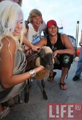 Alexander Ovechkin had a little lamb...
