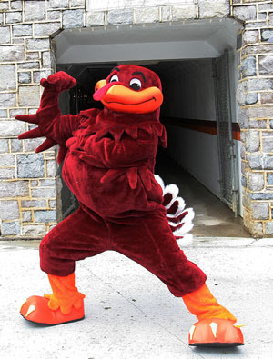 [BLEEP] YOU, MASCOT! HokieBird