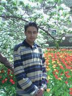 عکس من