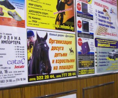 организация досуга детьми на лошадяъ
