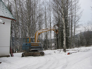  Dropping Trees With the Excavator