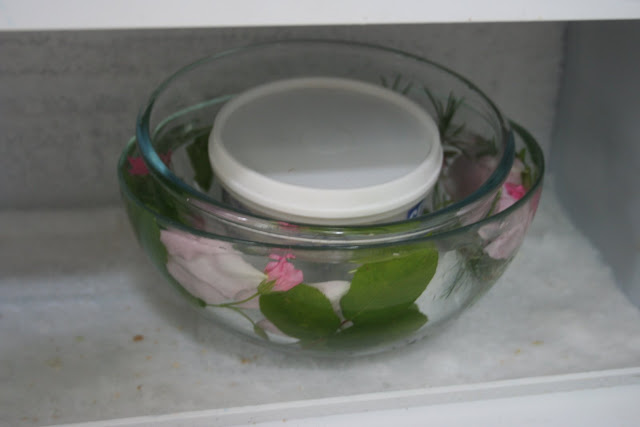freezing rose ice bowl