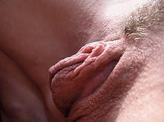 Big inner pussy lips