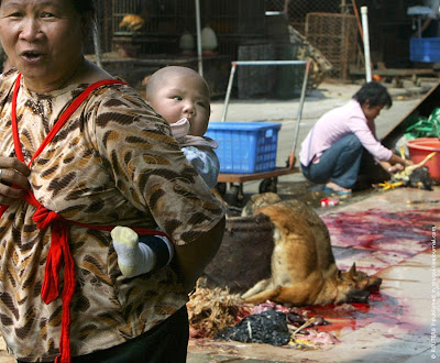 Dog market in China